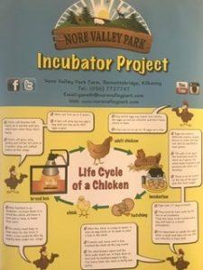 Incubator Project